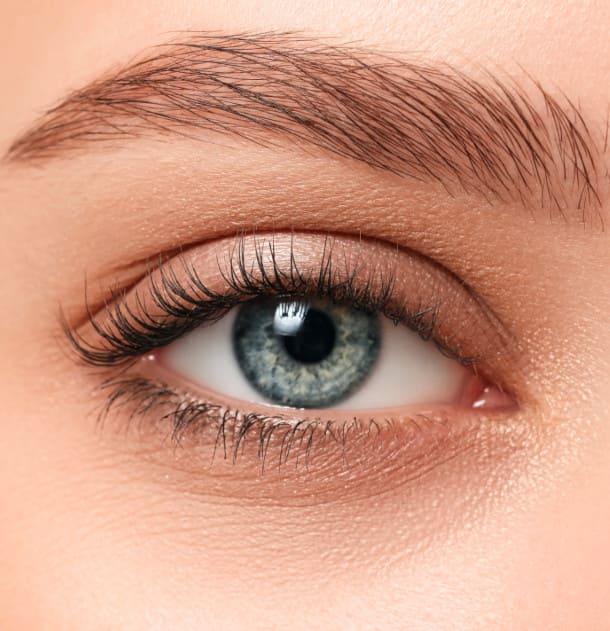 Primer plano de las cejas de una mujer