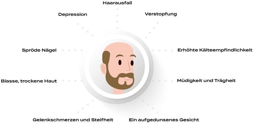 Infografik zur Darstellung der Symptome der Hashimoto Krankheit