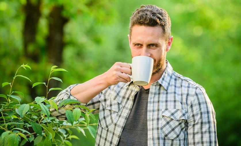 Mann trinkt Tee aus pflanzlichen Mitteln
