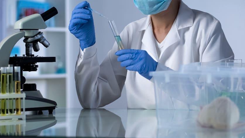 Ärztin im Labor prüft Resultate von Versuchen an Mäusen