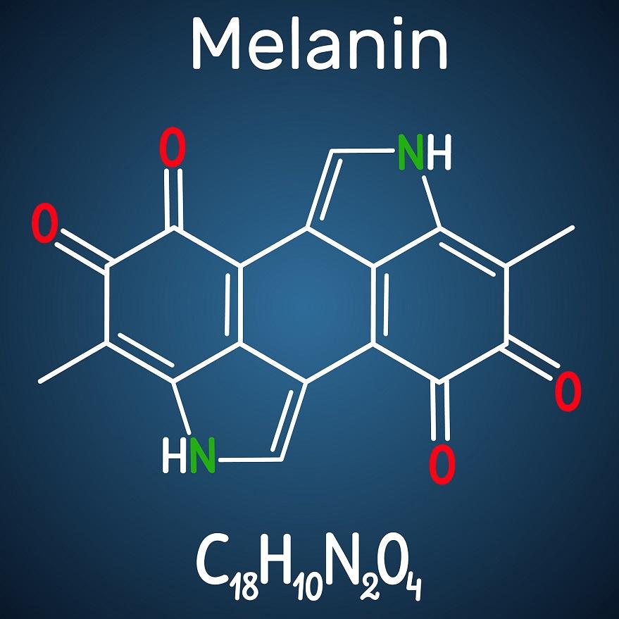 Chemische Zusammensetzung von Melanin