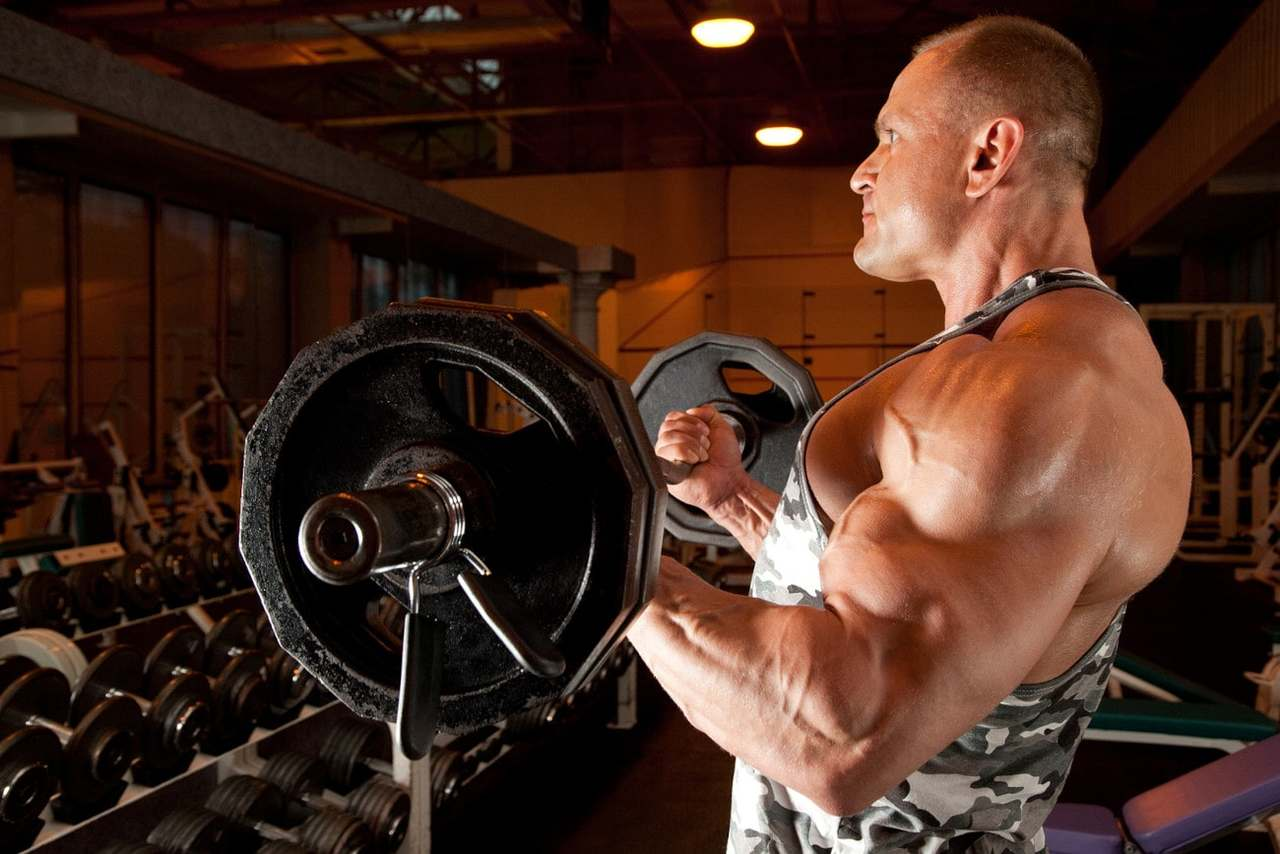 Muskulöser Mann trainiert im Fitness-Studio